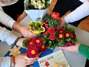 Nakupljene rože (primule, kalanhoje, narcise)
