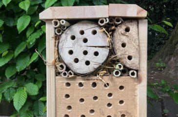 Gnezdilnica za čebele